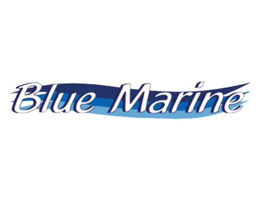 Logo Blue Marine Pulizia Barca